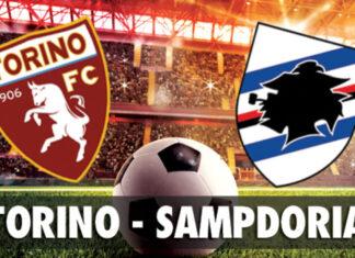 Serie A, Torino-Sampdoria: quote, pronostico e probabili formazioni